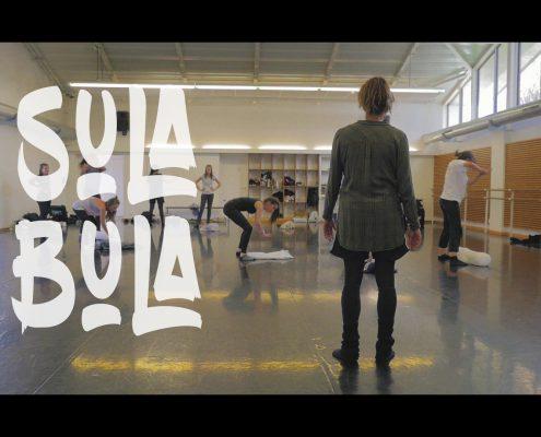 Vidéo artistiques LA ROCHE SUR YON